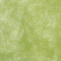Uni-Vlies olive