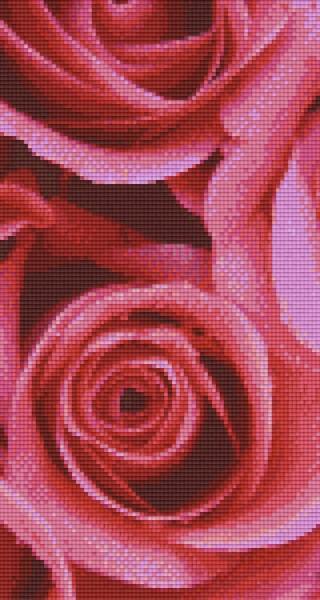 px806159_Pixelset-Rosen-4