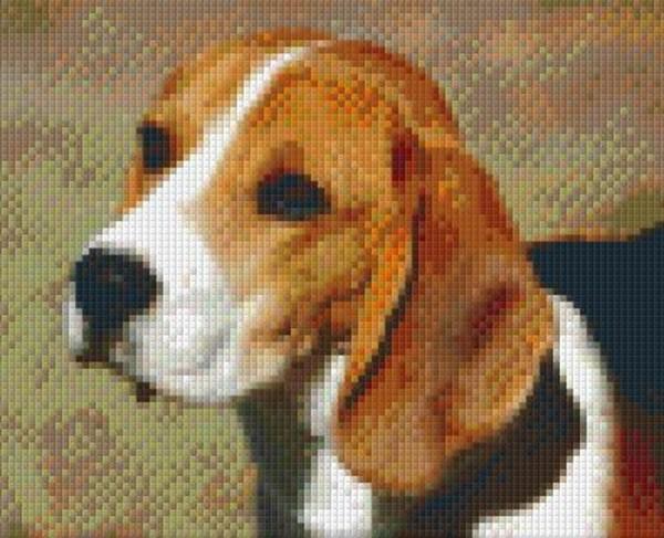 Set Hund 1