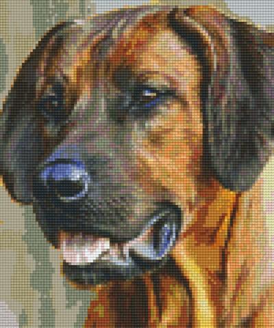 806153 Pixelhobby Set Hund braun mit 6 Platten