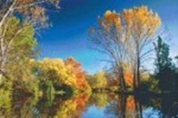 Set Herbst