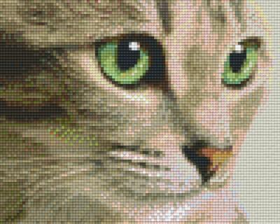 px804438_Pixelset-Katze-mit-grünen-Augen
