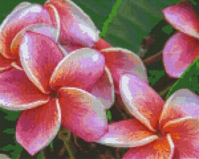 809441_Pixelset-Blumen-rosa-3