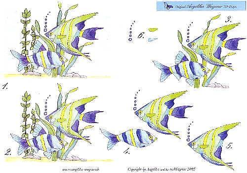 Motivbogen Fische