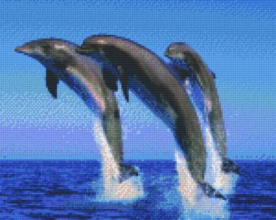 px809296_Pixelset-3-Delfine