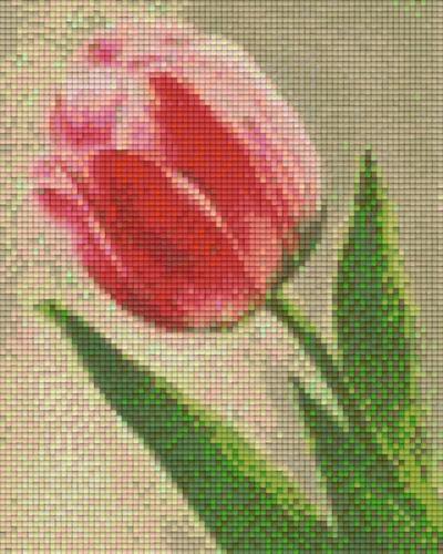 px804073_Pixelset-Tulpe