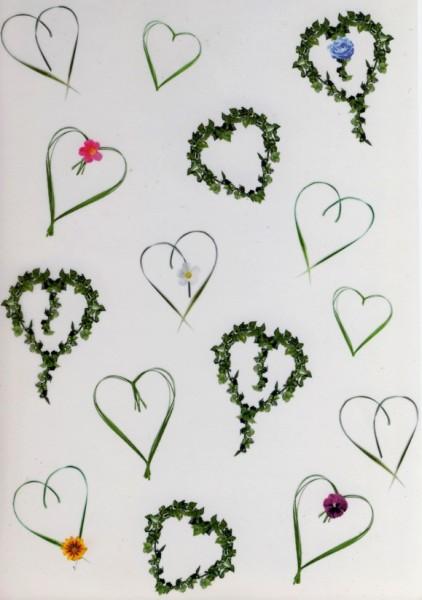 Transparentpapier Herzen grün