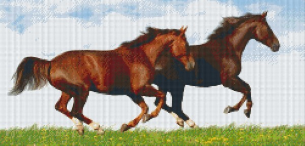 Set Pferde im Galopp 1
