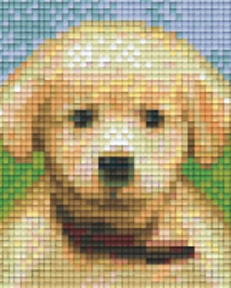 Set Hund Welpe