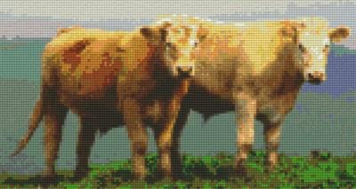 806132 Pixelhobby Set Kühe mit 6 Platten