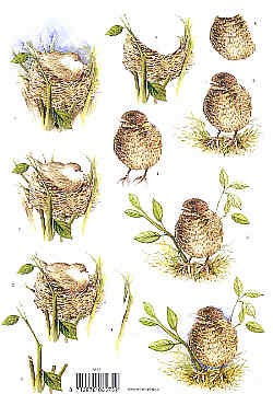Motivbogen Vogel im Nest